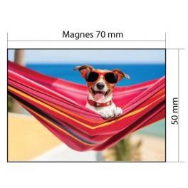 Advertising Magnets Refrigerator magnets